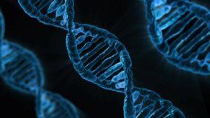 Preimplantation Genetic Testing